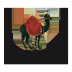 Schwarzes Kameel Logo